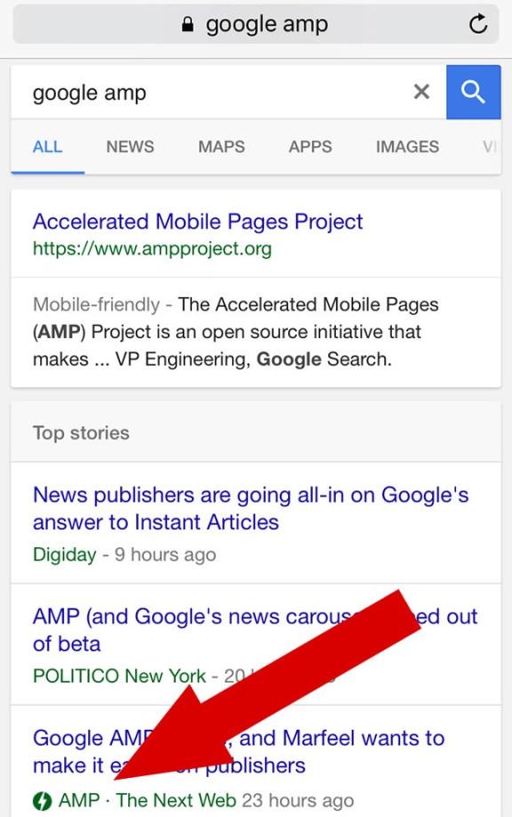 amp-serp-google